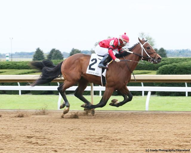 The Smarty Jones Stakes is… News Image