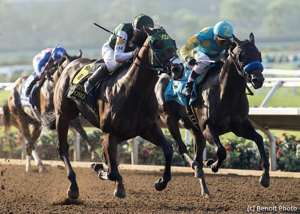 Handicapping the FrontRunner… News Image