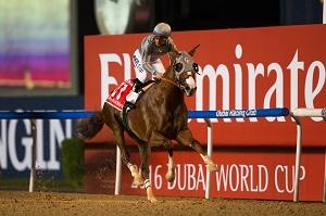 California Chrome romps in… News Image