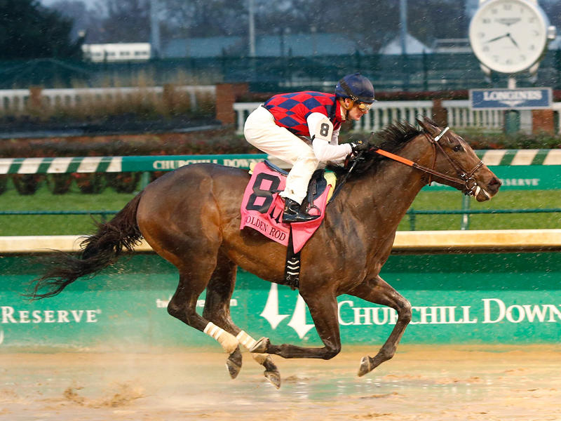 ​Carina Mia steps onto Road to the Kentucky Oaks with easy Golden Rod win