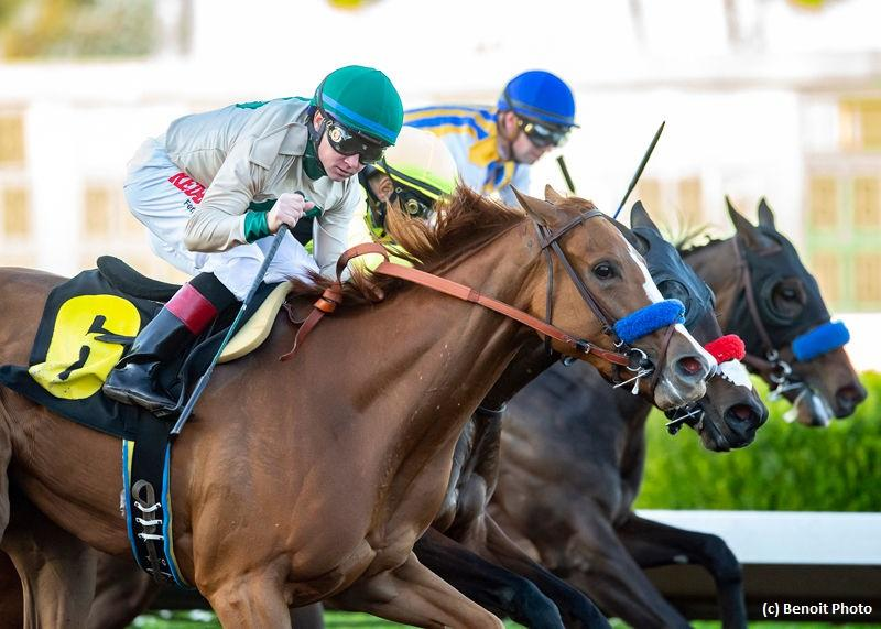 Chasing Yesterday, American Pharoah's half-sister, goes the distance in Starlet