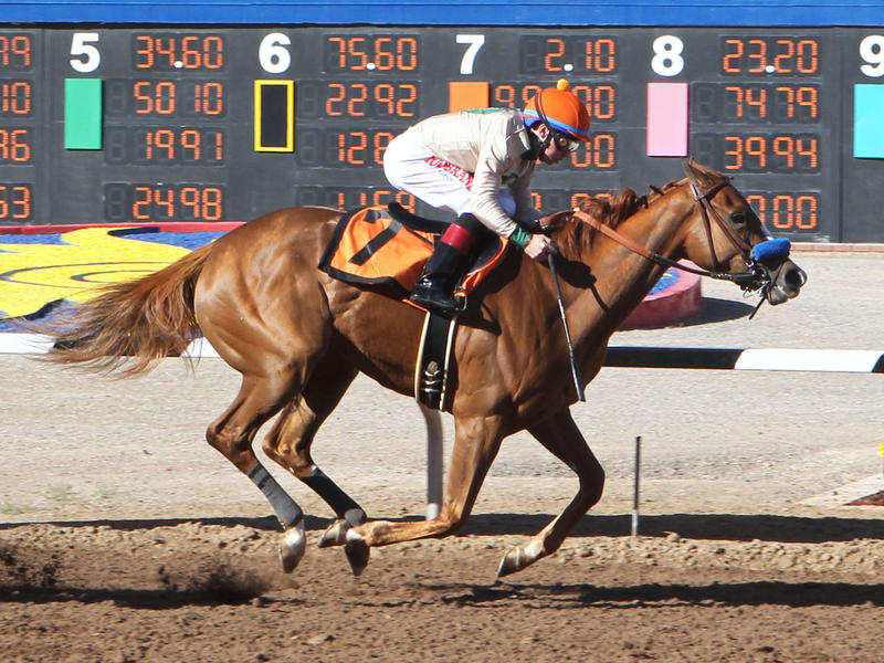 Chasing Yesterday wins the Sunland Park Oaks
