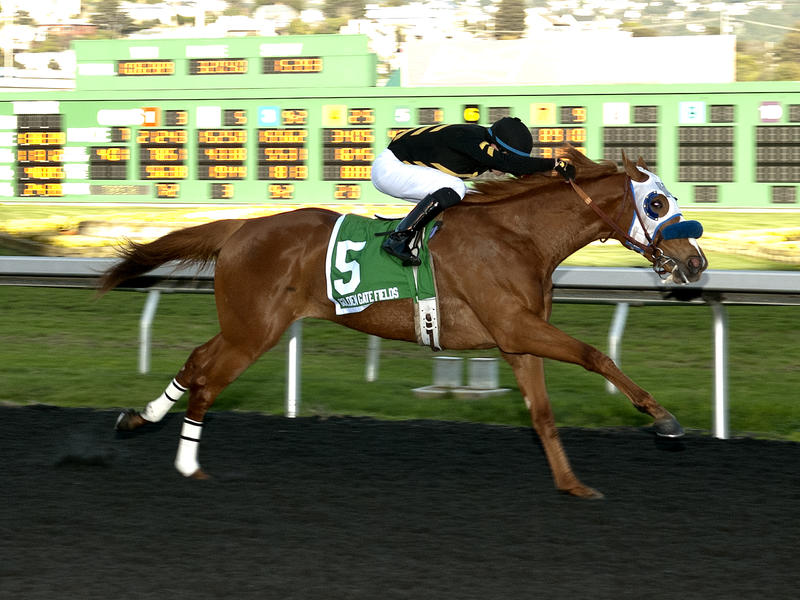 Calumet homebred Choo Choo faces eight in El Camino Real Derby