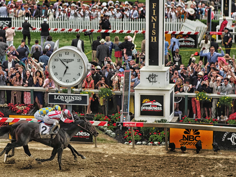 5 Fast Facts: Preakness Stakes News Image