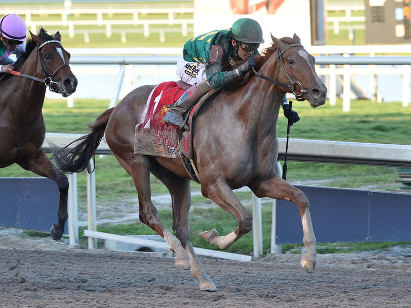 Code of Honor makes Derby… News Image