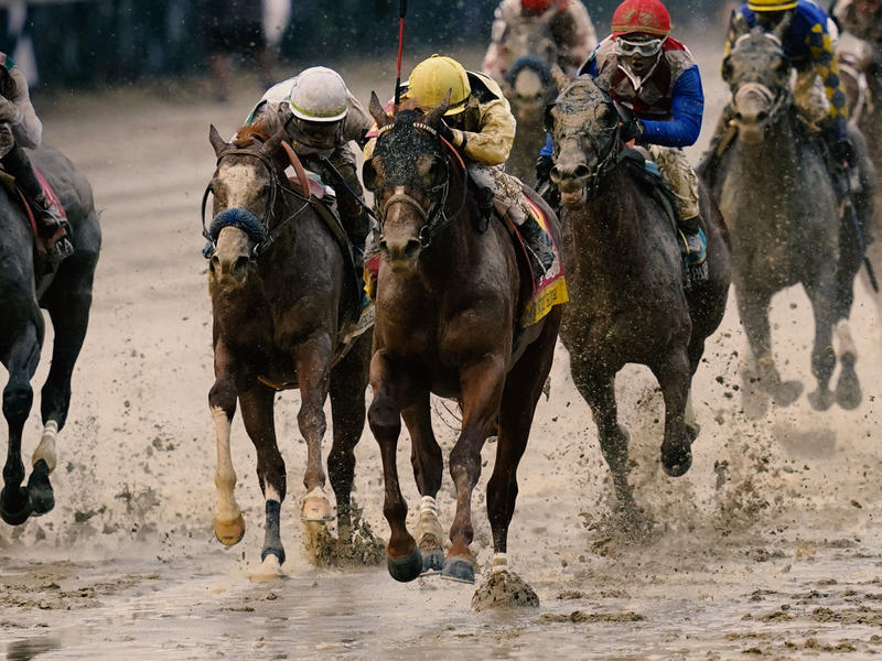 Country Horse in Kentucky Derby 145
