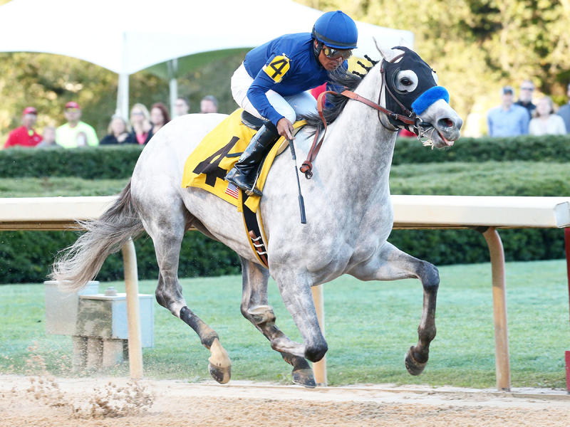 Cupid heads 12-horse Arkansas Derby