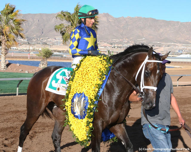 Cutting Humor wears the Sunland Derby winner's garland