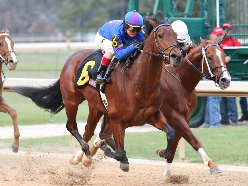 Discreetness pulls off upset of Smarty Jones