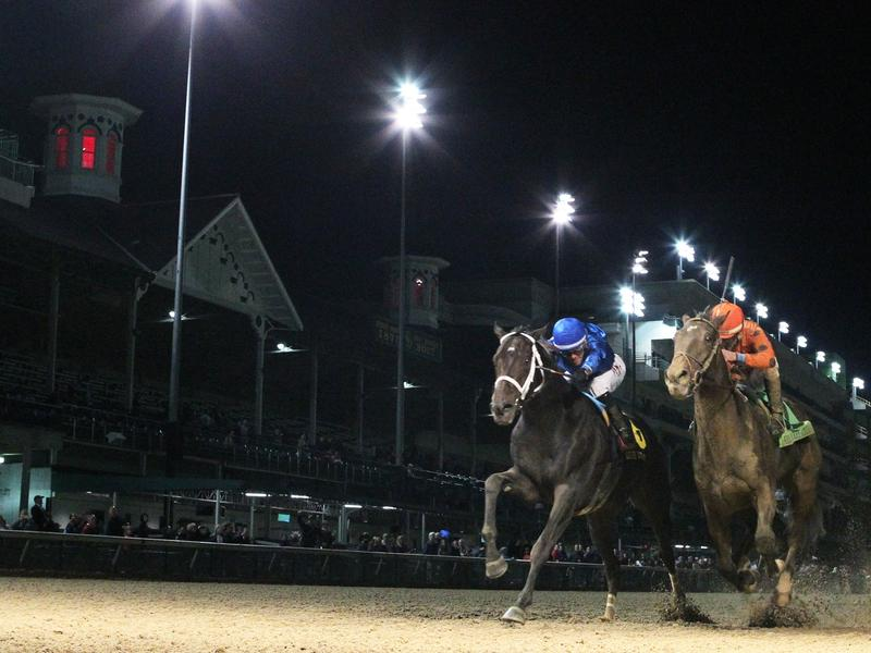 Kentucky Derby Horse Profile: Enticed