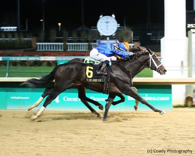 Enticed, Tiz Mischief emerge in Kentucky Jockey Club