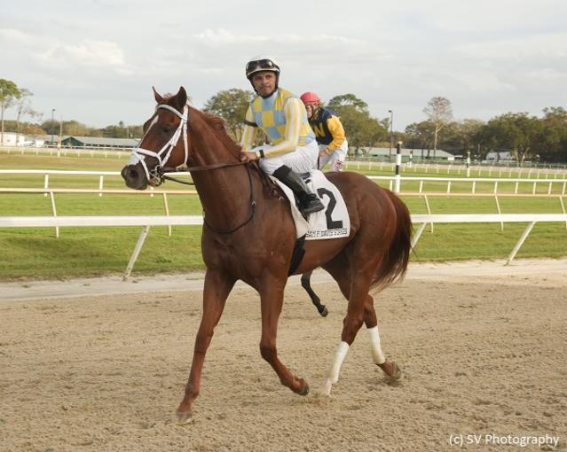 Flameaway tops Tampa Bay Derby field