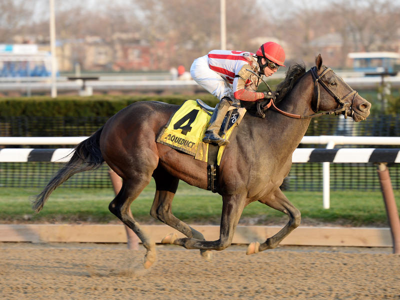 Flexibility faces six as Withers favorite