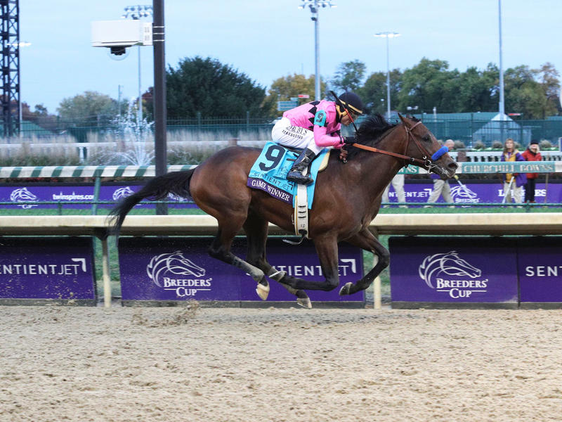 Game Winner landing the Breeders' Cup Juvenile