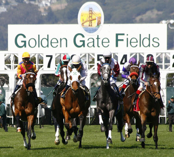 Golden Gate Fields race