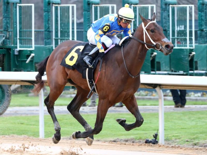 Gold Street winning the Smarty Jones (c) Coady