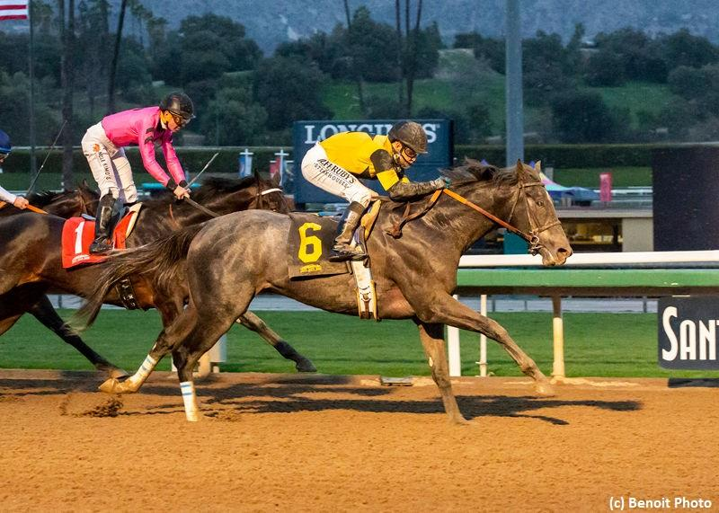 Gunmetal Gray rallies to win Sham