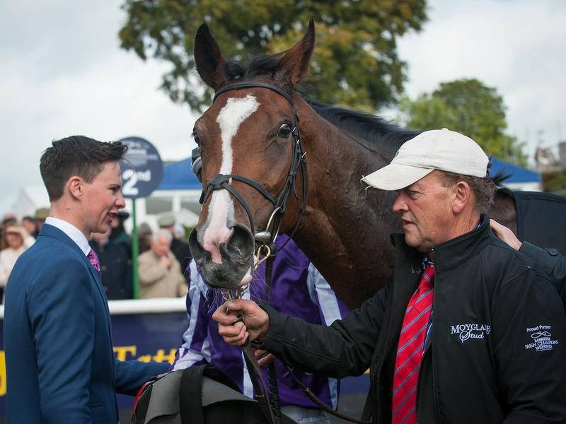 Coolmore filly takes on Godolphin… News Image