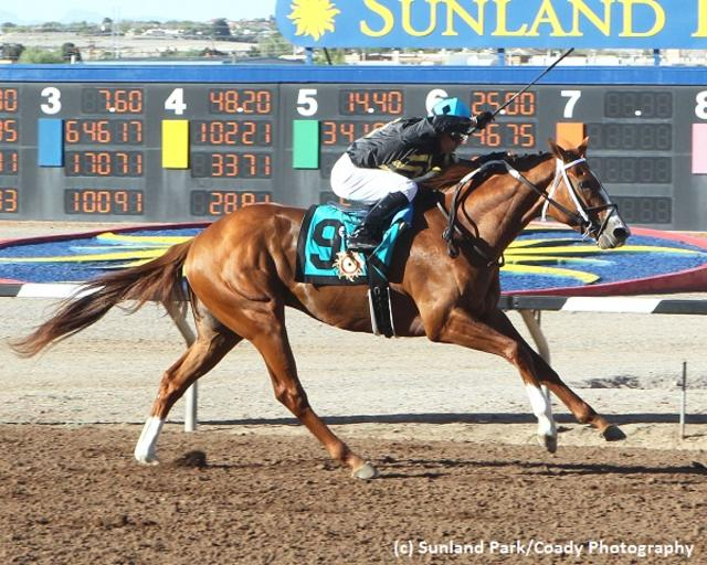 Hence faces legitimacy questions after splendid Sunland Derby performance