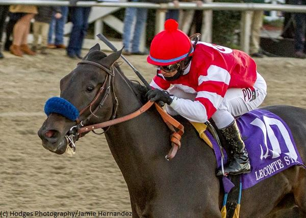 Kentucky Derby Horse Profile: Instilled Regard