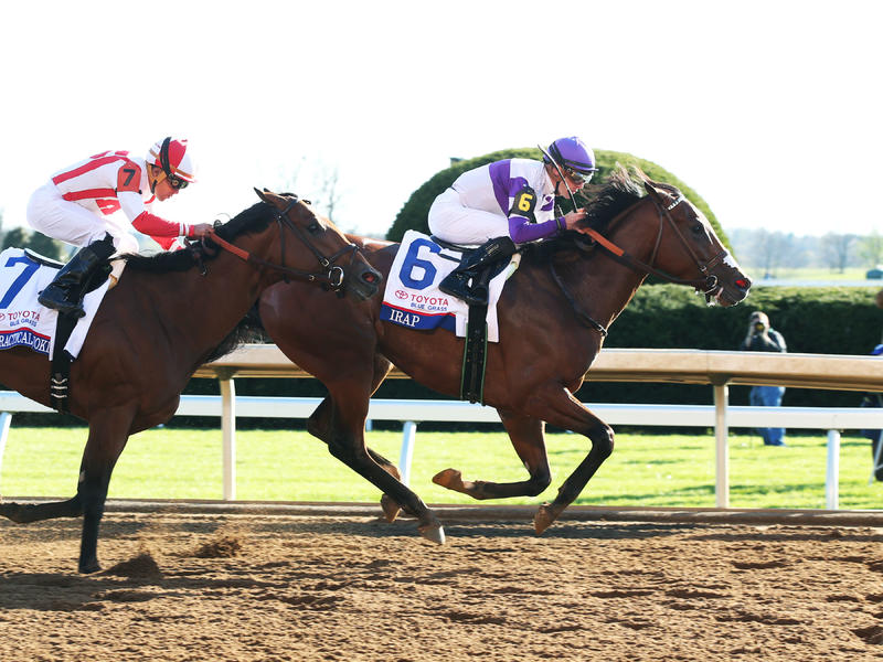 Irap breaks maiden in Blue… News Image