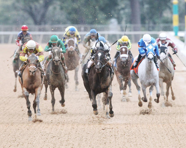 It Tiz Well taking the Oaklawn… News Image