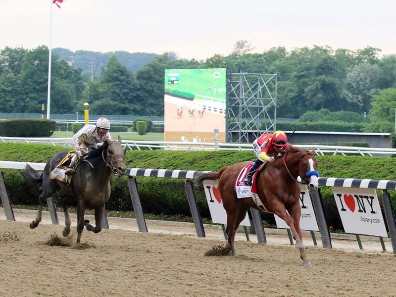 Gronkowski's Belmont effort boosts European Road to Kentucky Derby; Mendelssohn eyes Dwyer