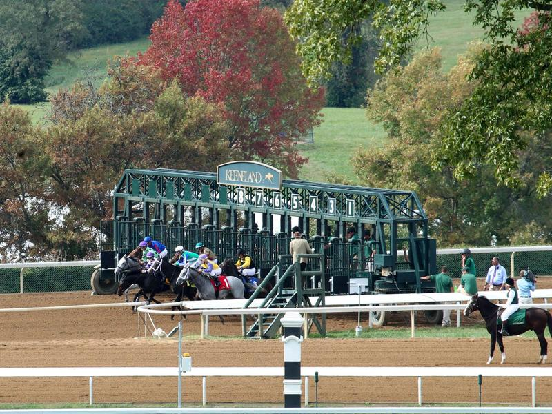 Best bet for the weekend at Keeneland, October 13