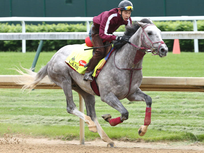 Lani can win the 142nd Kentucky… News Image