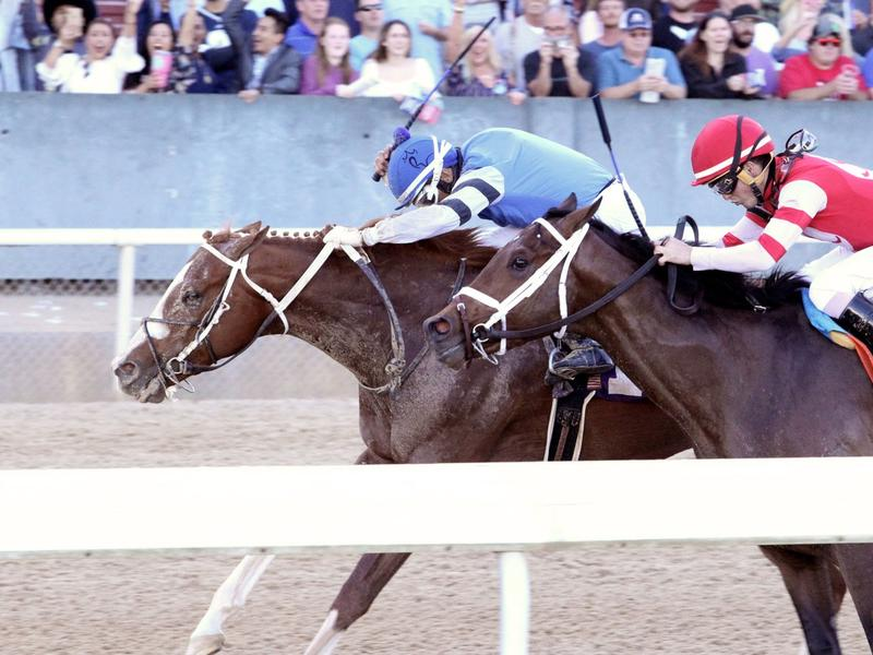 Laughing Fox wins the Oaklawn Invitational Stakes
