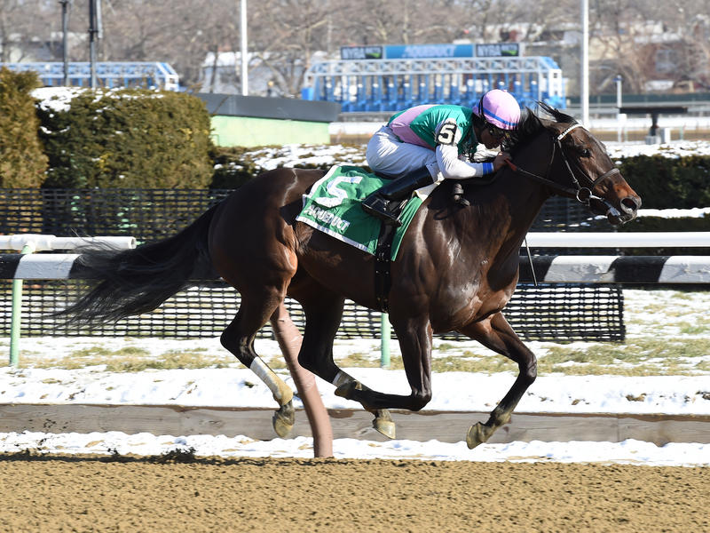 Lockdown scores stakes debut,… News Image