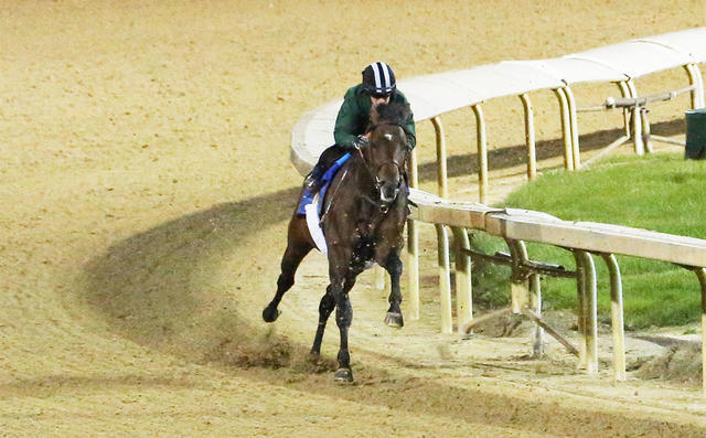 Kentucky Derby Update - Lone… News Image