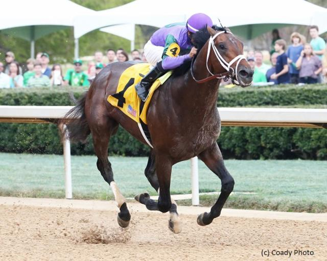 Magnum Moon impacts Kentucky Derby picture in Rebel romp