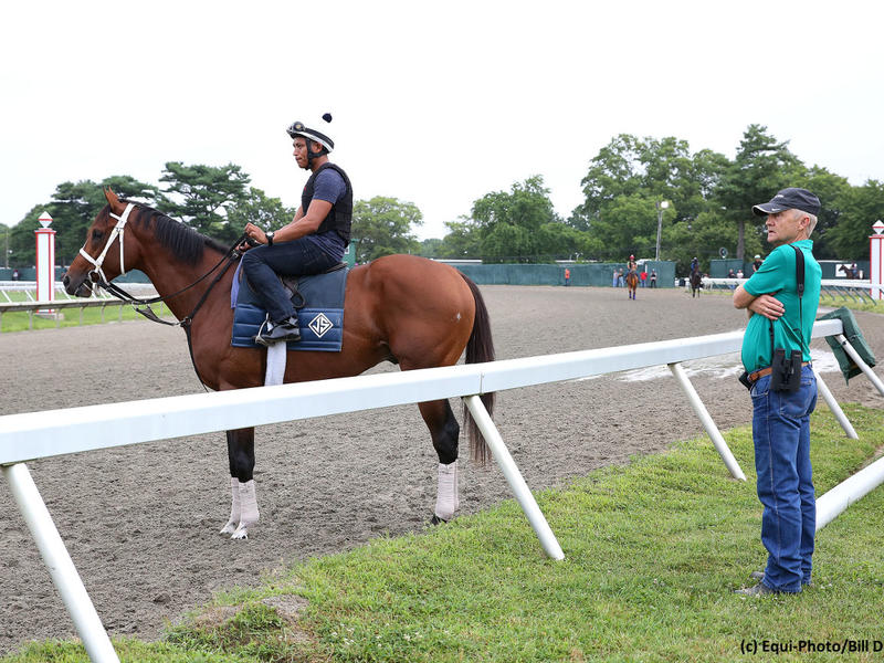 Maximum Security readying for the Haskell Invitational (G1) at Monmouth Park