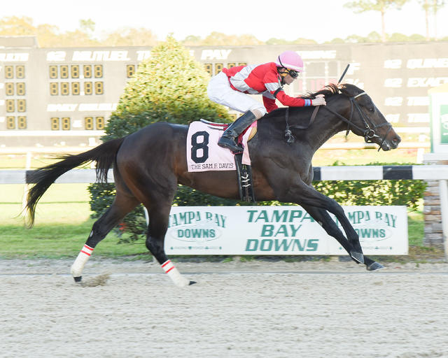 McCraken rallies for track… News Image