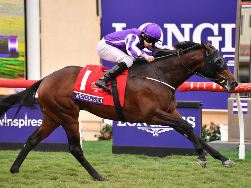 Breeders' Cup hero Mendelssohn back in action in Patton Stakes
