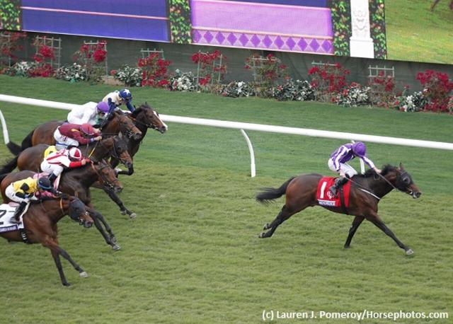 Mendelssohn one to watch for… News Image