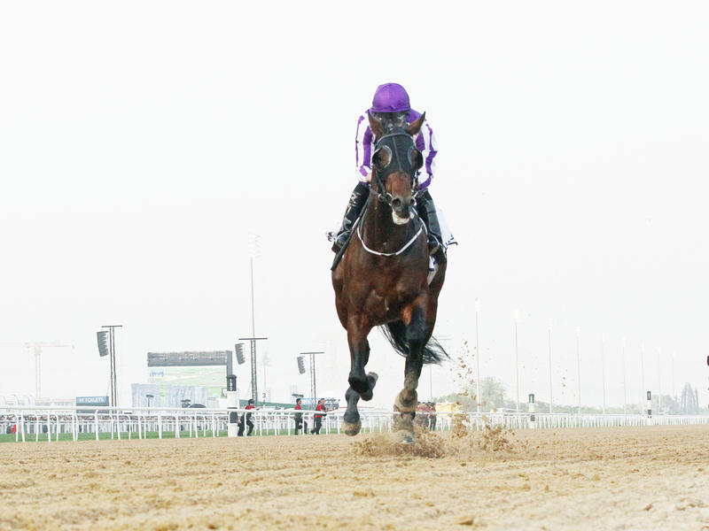 Mendelssohn rates as strongest international threat for Kentucky Derby glory