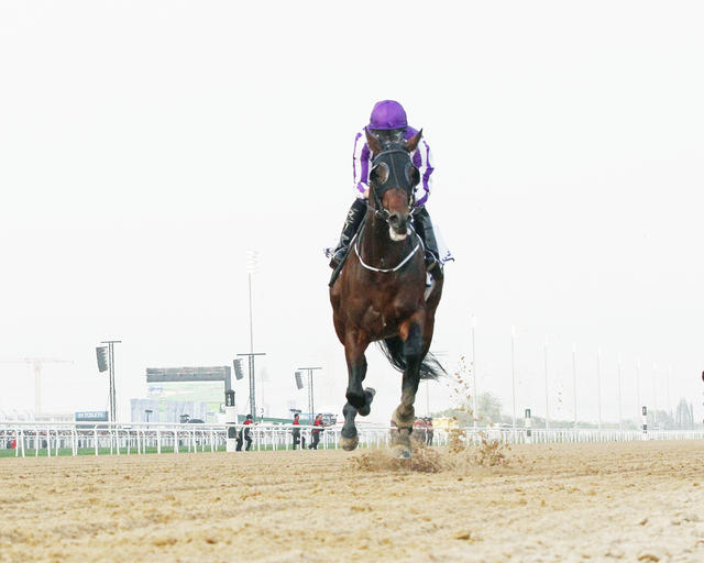 Mendelssohn blows away rivals… News Image