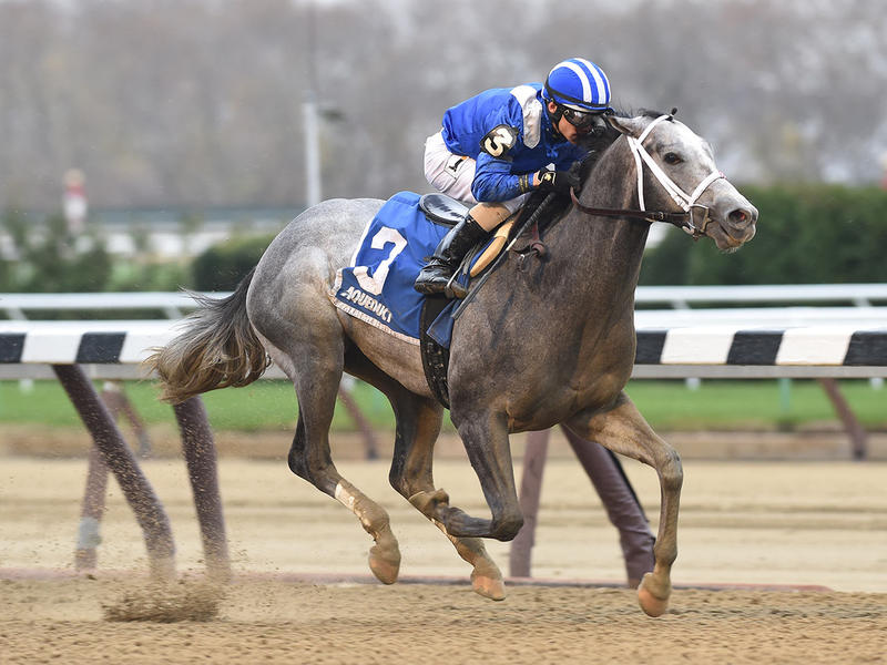 Mohaymen stays undefeated in Remsen