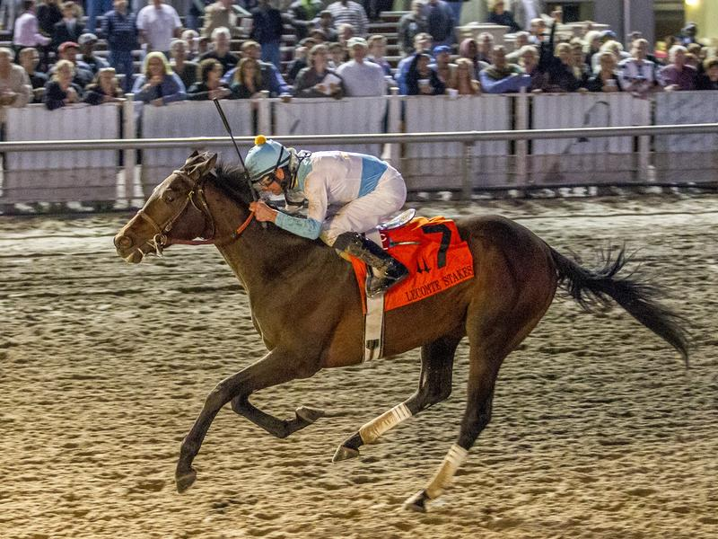 Mo Tom rallies to win TwinSpires.com Lecomte, heads 1-2 finish for GMB Racing