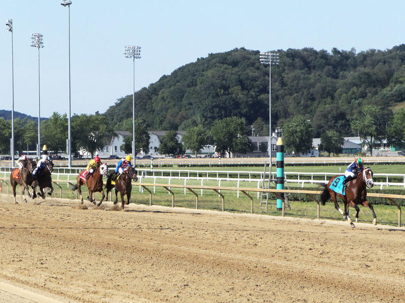 Mr. Money romps in the West Virginia Derby