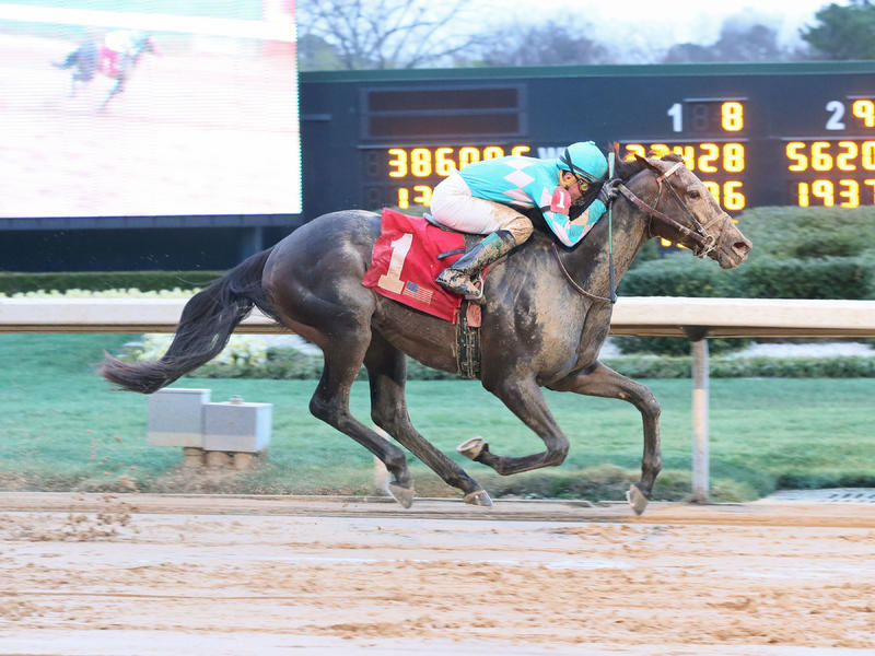 My Boy Jack rides rail to victory in Southwest