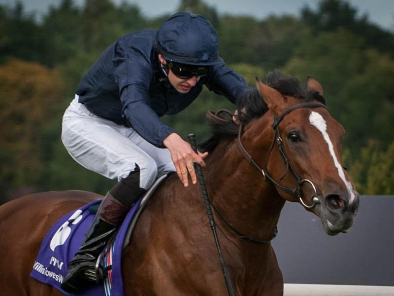 Frankel colts square off in… News Image