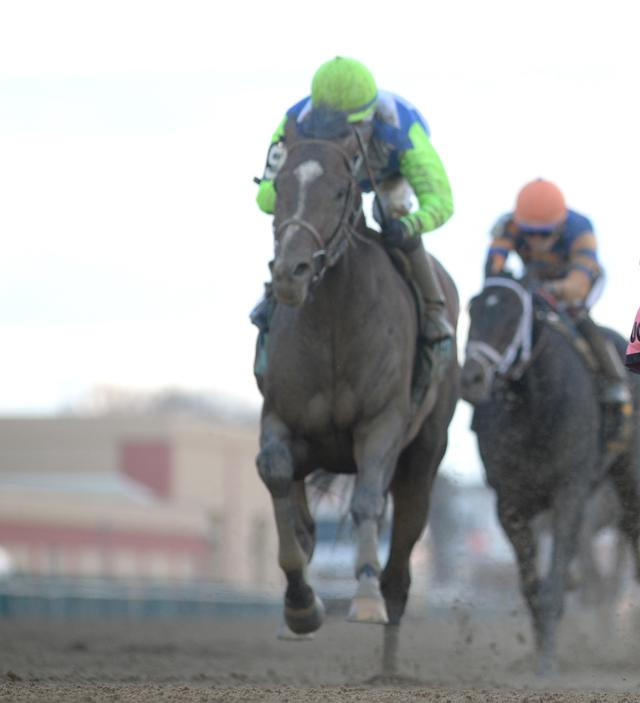 Field of 10 entered in Lexington… News Image