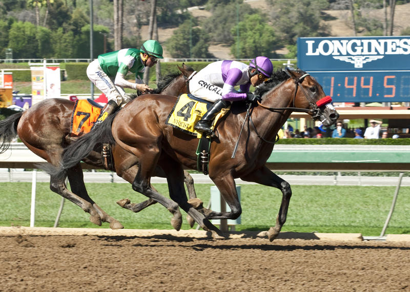 Nyquist's road to Derby begins in San Vicente