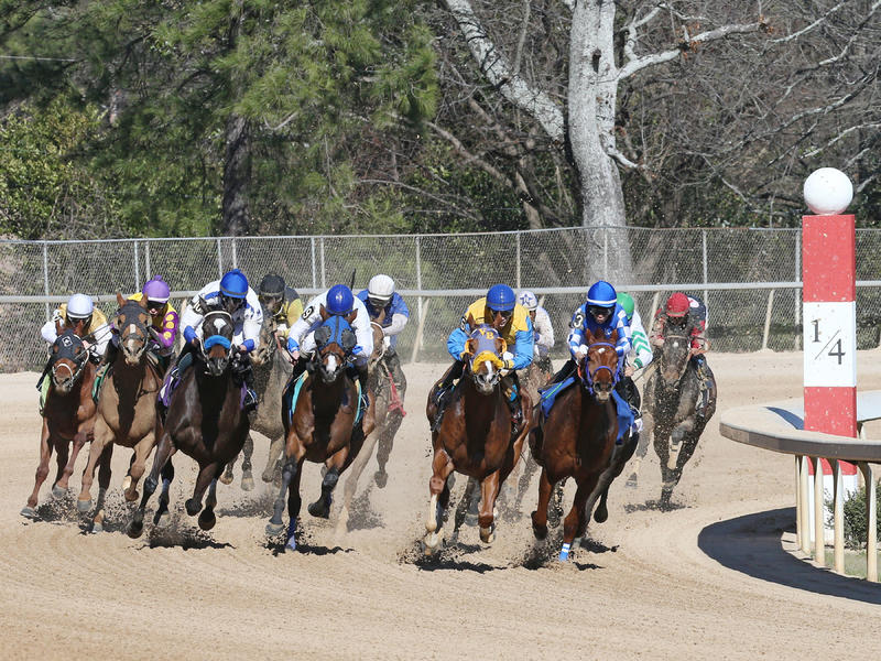 Arkansas Derby last chance… News Image