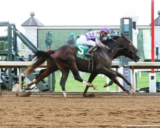 Lecomte Stakes Study Guide News Image