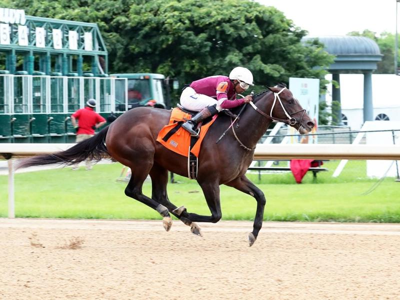 Pneumatic winning at Oaklawn Park (c) Coady Photo