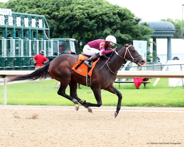Pneumatic wins at Oaklawn Park (Coady Photography)